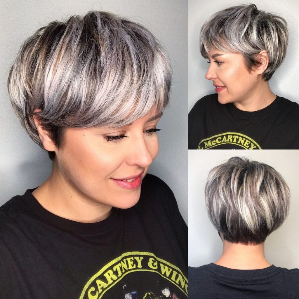6- Short Bronde and Silver Pixie Bob